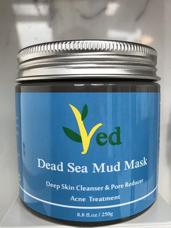 Masque de boue de la mer Morte pour le visage, le corps et les cheveux - 100% naturel et organique - 260 ml de nettoyage facial, hydratant pour la peau et désintoxication, masque facial, élimine l'acné, améliore les pores larges et le réducteur des rides,