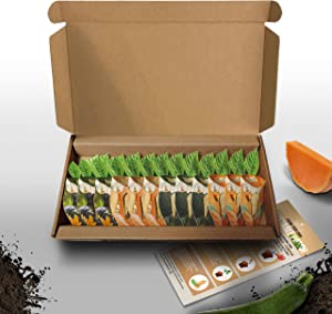 Vegtrug Seed Pod Kit - Vegetable, Varied