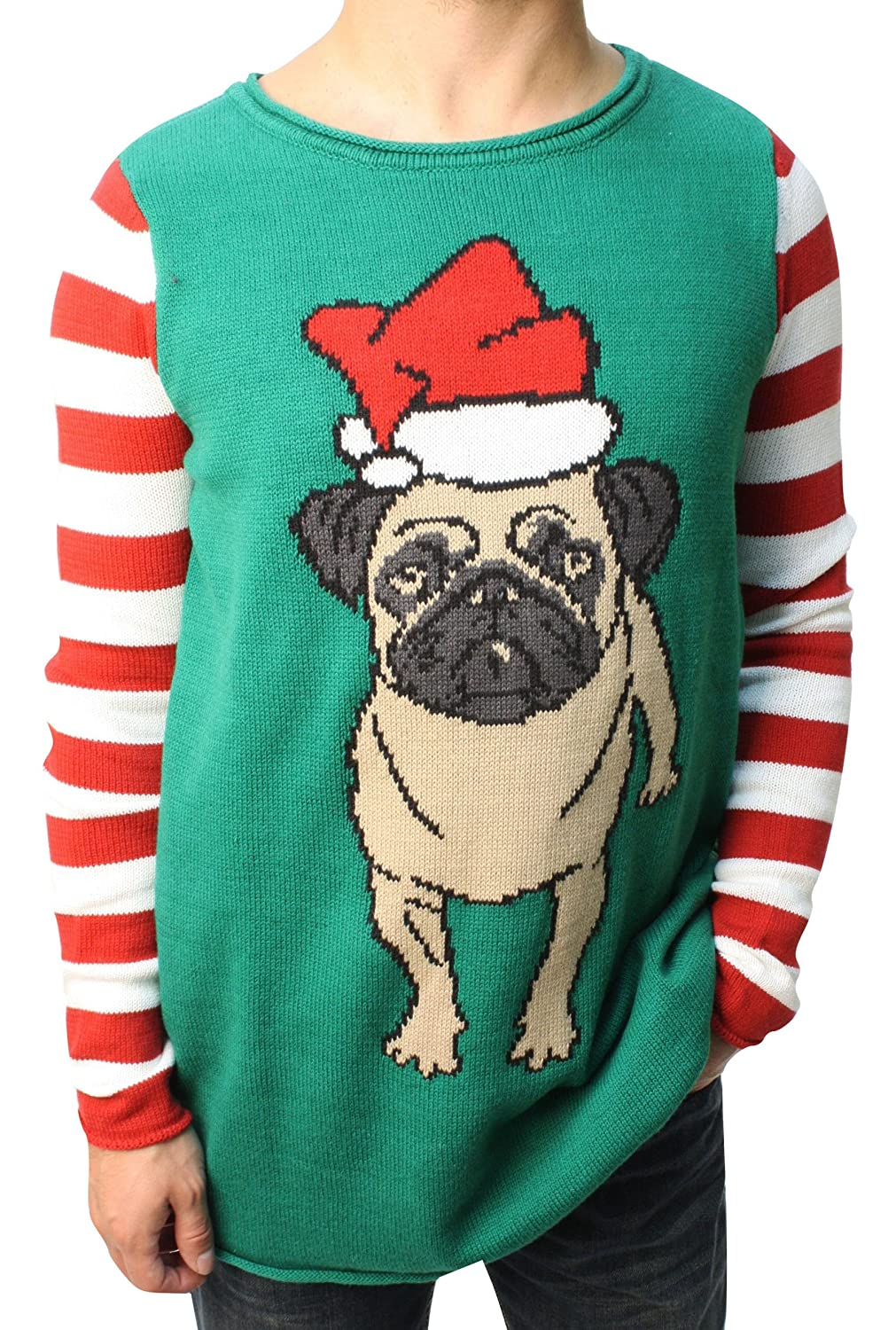 Ugly Christmas Sweater Funny Teen Boy's Dog Pug Life Sweater-Large Green TB-SWP5-1721BMG2-EMERALD-L