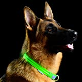 Metal Buckle LED Dog Collar, USB Rechargeable.