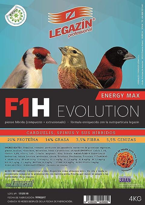 LEGAZÍN PIENSO F1H Evolution - 4KG: Amazon.es: Productos para ...