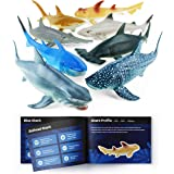 """Boley Shark Toys - 8 Pack 10"""" Long Soft Plastic Realistic Shark Toy Set - Toddler Sensory Toys and Birthday Party Favors for"""
