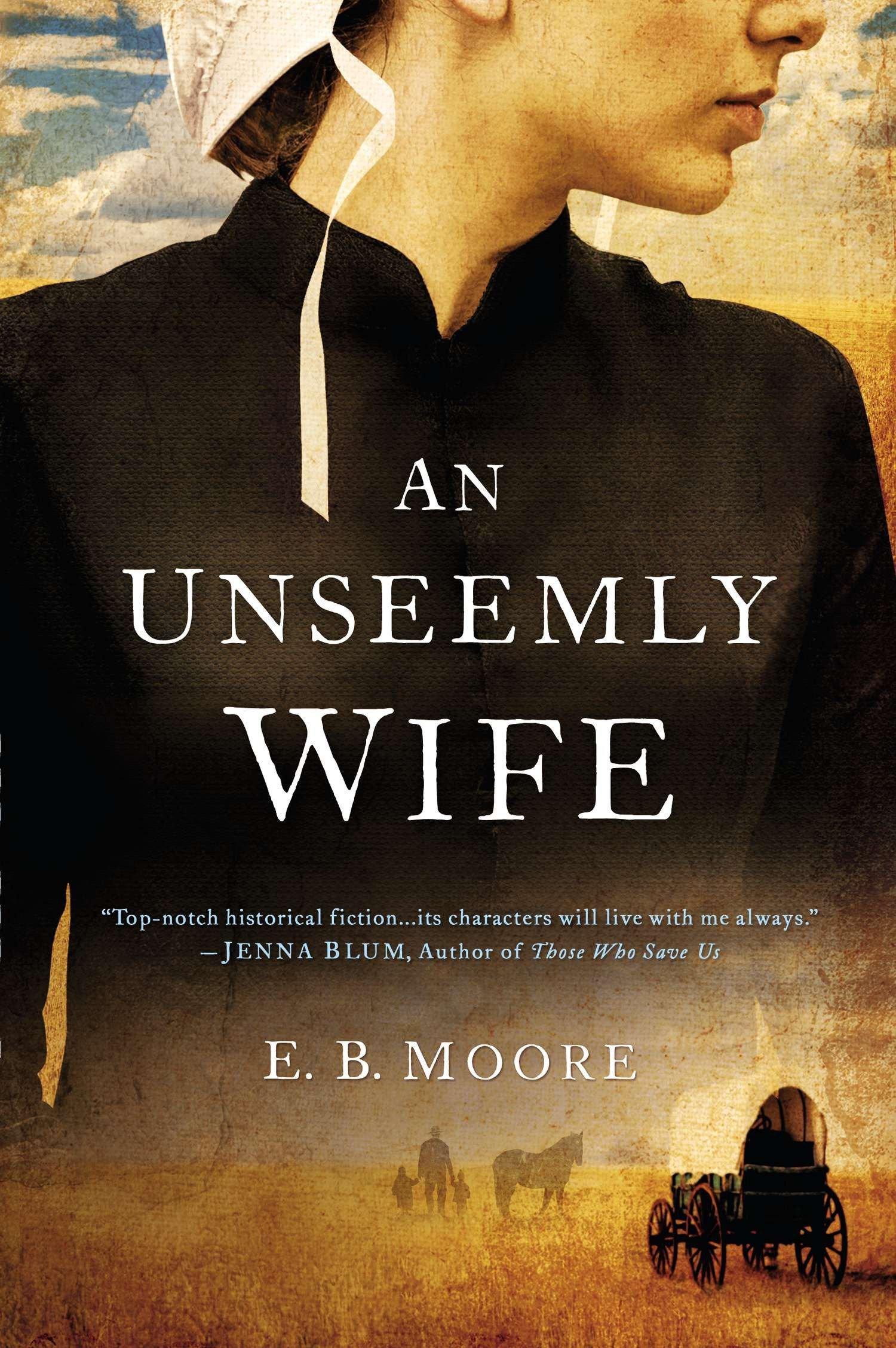 Read Online An Unseemly Wife pdf epub