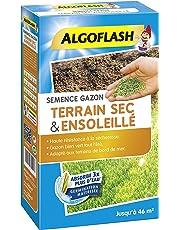 ALGOFLASH Semence Gazon Terrain Sec & Ensoleillé, 1 kg, SEMSOL1
