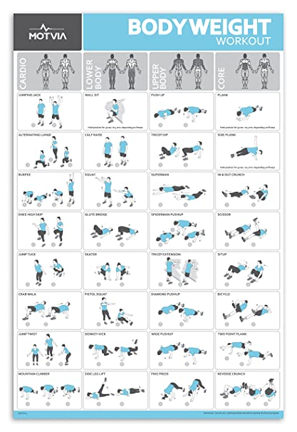 Motvia Bodyweight Exercise Home Gym Laminated Poster Core Lower Body Upper Body Cardio20 Inches X 30 Inches Amazon In Sports Fitness Outdoors
