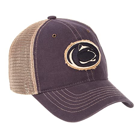 f136acc4d1a1b Image Unavailable. Image not available for. Color  Penn State University PSU  Nittany Lions ...