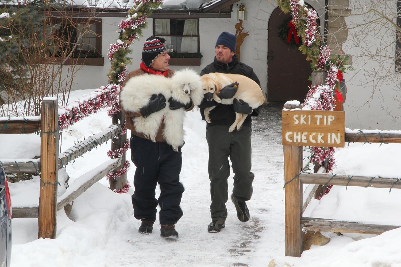 Amazon.com: Dog Who Saved Christmas Vacatn: Dean Cain, Mario Lopez ...