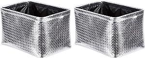 AmazonBasics Storage Bins - Metallic Silver, 2-Pack