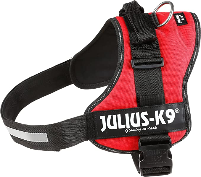 Julius-K9, Talla 3, 82-118 cm, Rojo: Amazon.es: Productos para ...