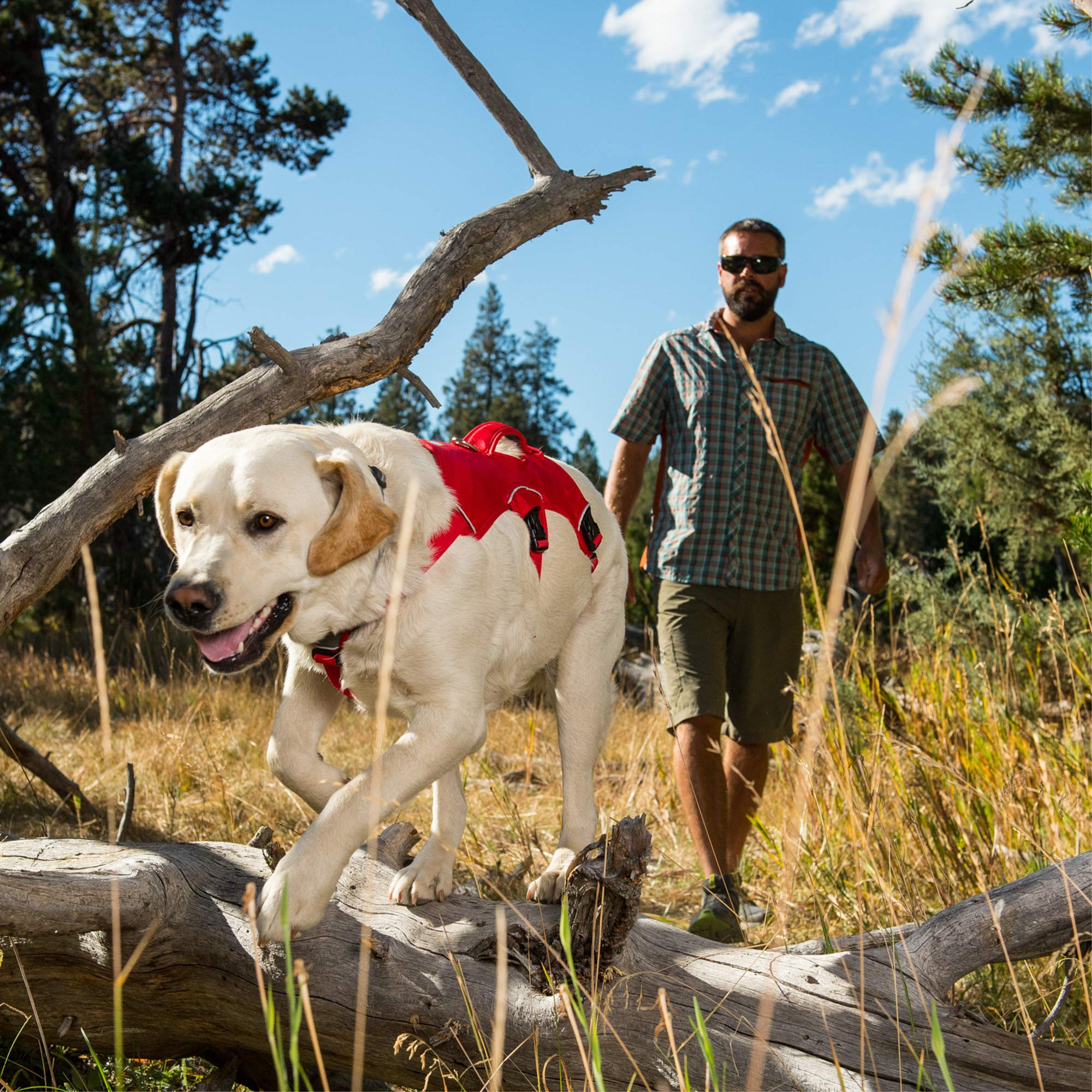 RUFFWEAR - Web Master, Multi-Use Support Dog Harness, Hiking and Trail Running, Service and Working, Everyday Wear, Red Currant, X-Small by RUFFWEAR (Image #9)