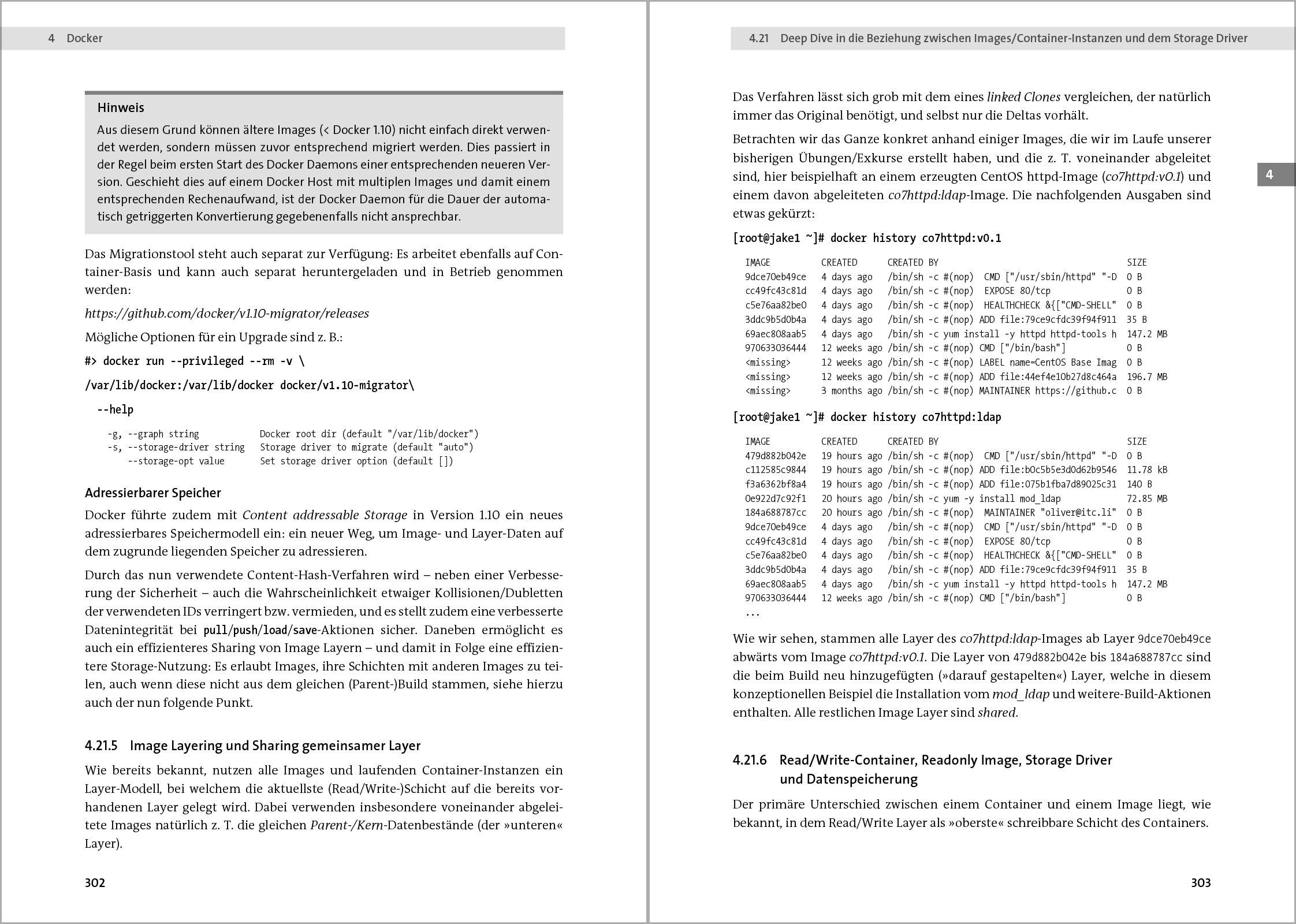 Skalierbare Container-Infrastrukturen: Das Handbuch für Administratoren und  DevOps-Teams. Inkl. Container-Orchestrierung mit Docker, Rocket,  Kubernetes, ...