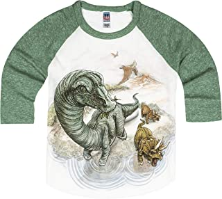 product image for Shirts That Go Little Boys' Brontosaurus and Triceratops Dinosaur Raglan T-Shirt