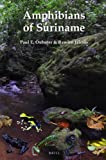 Amphibians of Suriname (Fauna of Suriname)