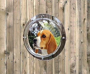 Amazon.com: Cúpula de valla para mascotas con burbujas ...
