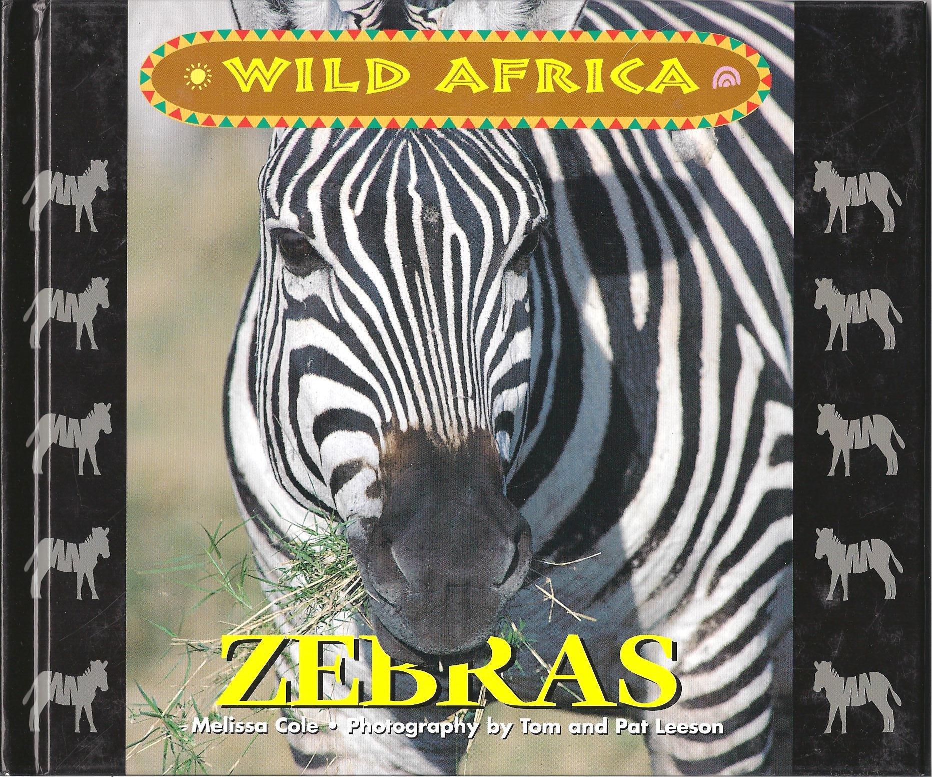 Wild Africa - Zebra