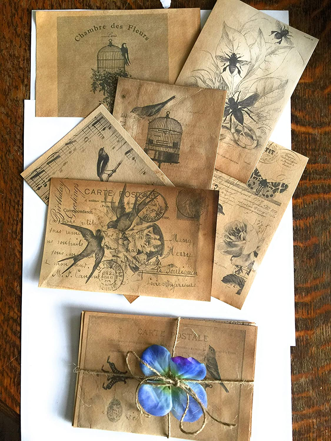 Size 3.9 x5.25 can be mailed postcards Framed prints Set of 6 postcards with Vintage French prints on hand dyed tea stained cardstock