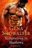 Temptation in Shadows: A Novella