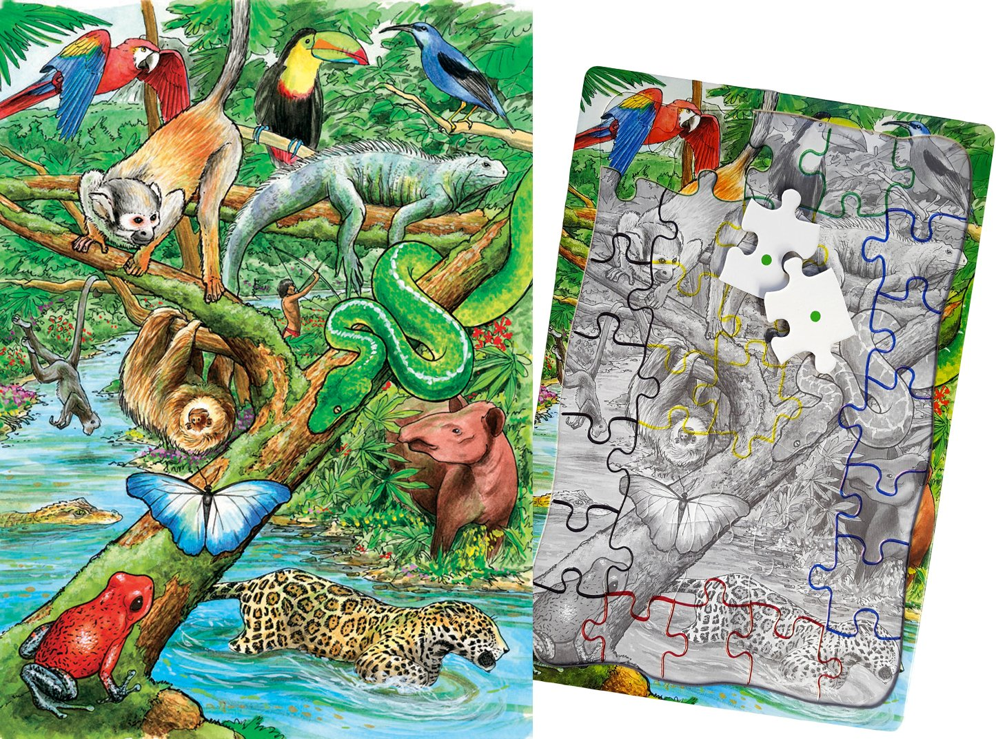 Games for Dementia and Alzheimers for Older Adults Puzzles Keeping Busy Life in The Rainforest 35 Piece Sequenced Jigsaw Puzzle Engaging Activities
