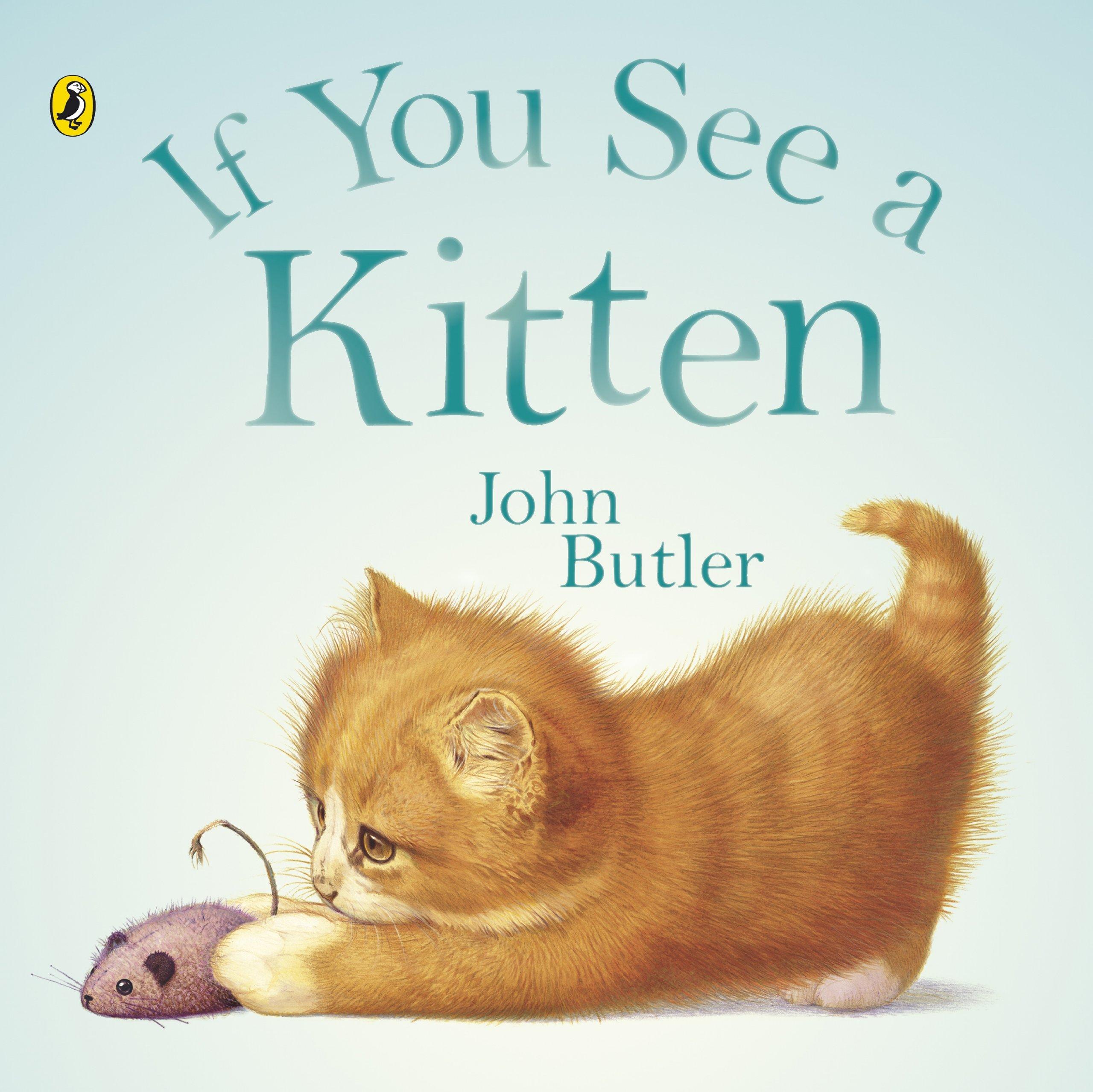 Read Online If You See a Kitten pdf epub