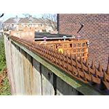 Fence Wall Spikes: Pack of 10 (4.5M to 13.5M) – BROWN