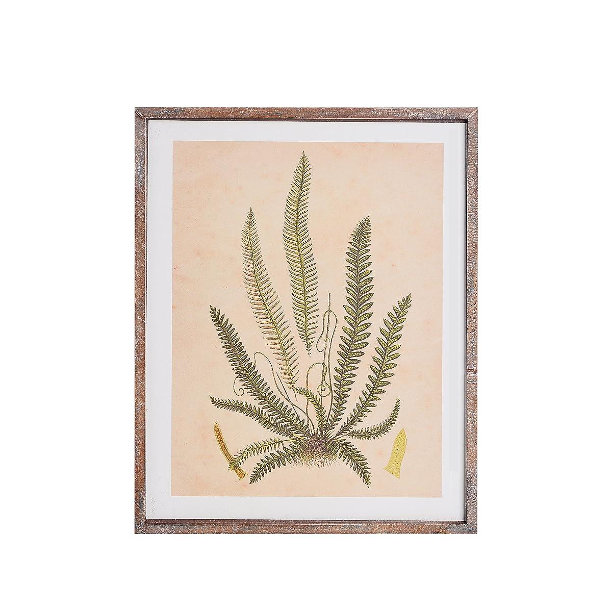 NIKKY HOME Vintage Framed Fern Botanical Wall Art Prints Home Living Room Decoration Set of 4 11x14 Inch