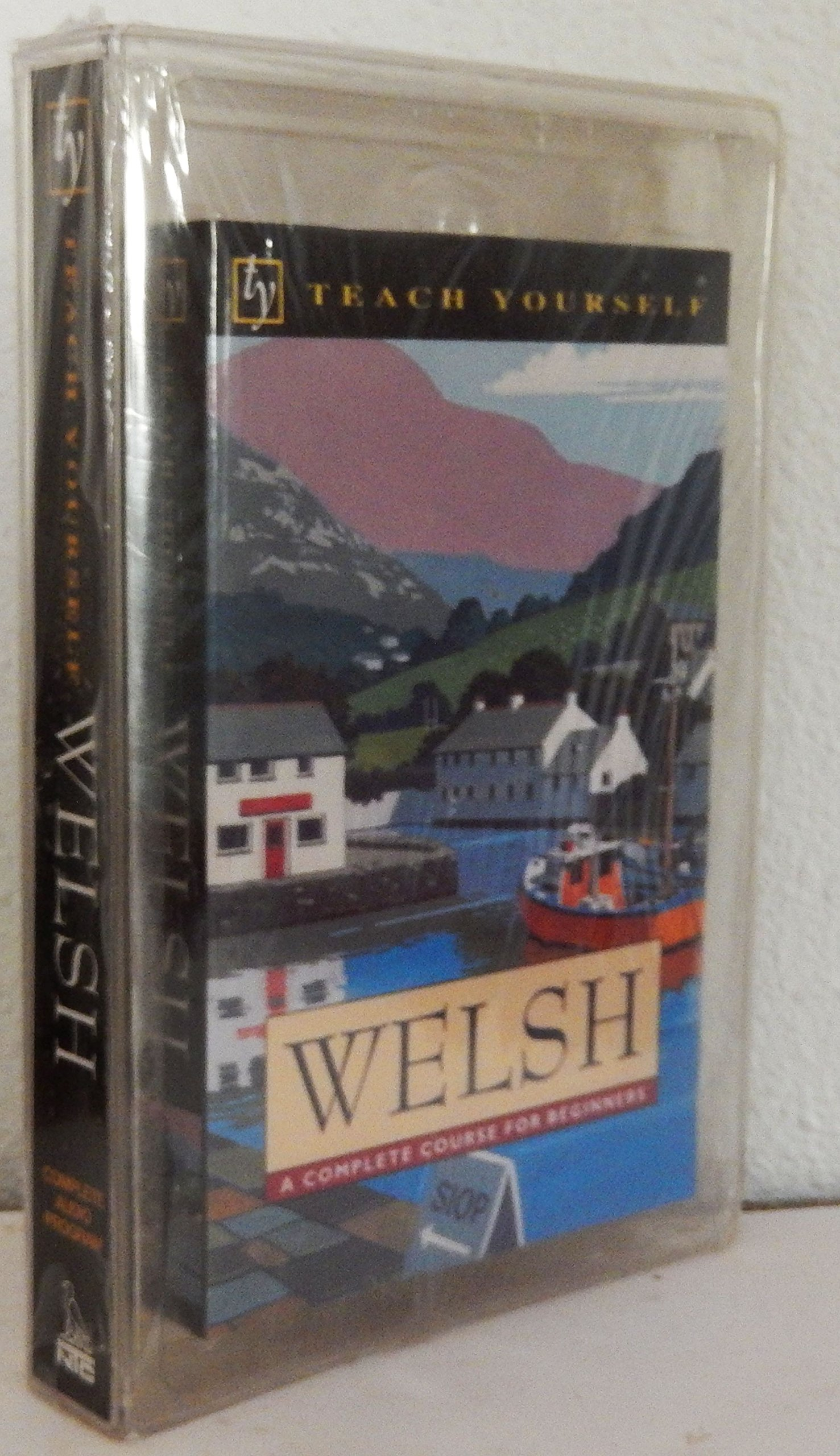 Welsh: A Complete Course for Beginners (Teach Yourself)