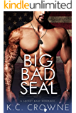 Big Bad SEAL: Mountain Man's Secret Baby Romance (Big Bad Daddies)