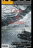 Carne de Gallina