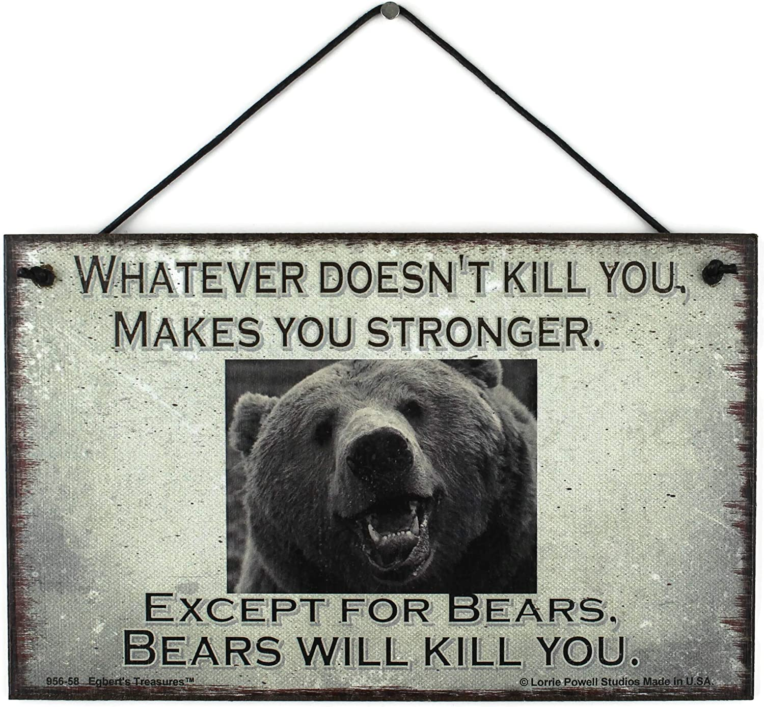 5x8 Vintage Style Sign (with Bear) Saying, Whatever Doesn't Kill You, Makes You Stronger. Except for Bears, Bears Will Kill You. Decorative Fun Universal Household Family Signs for Your Home
