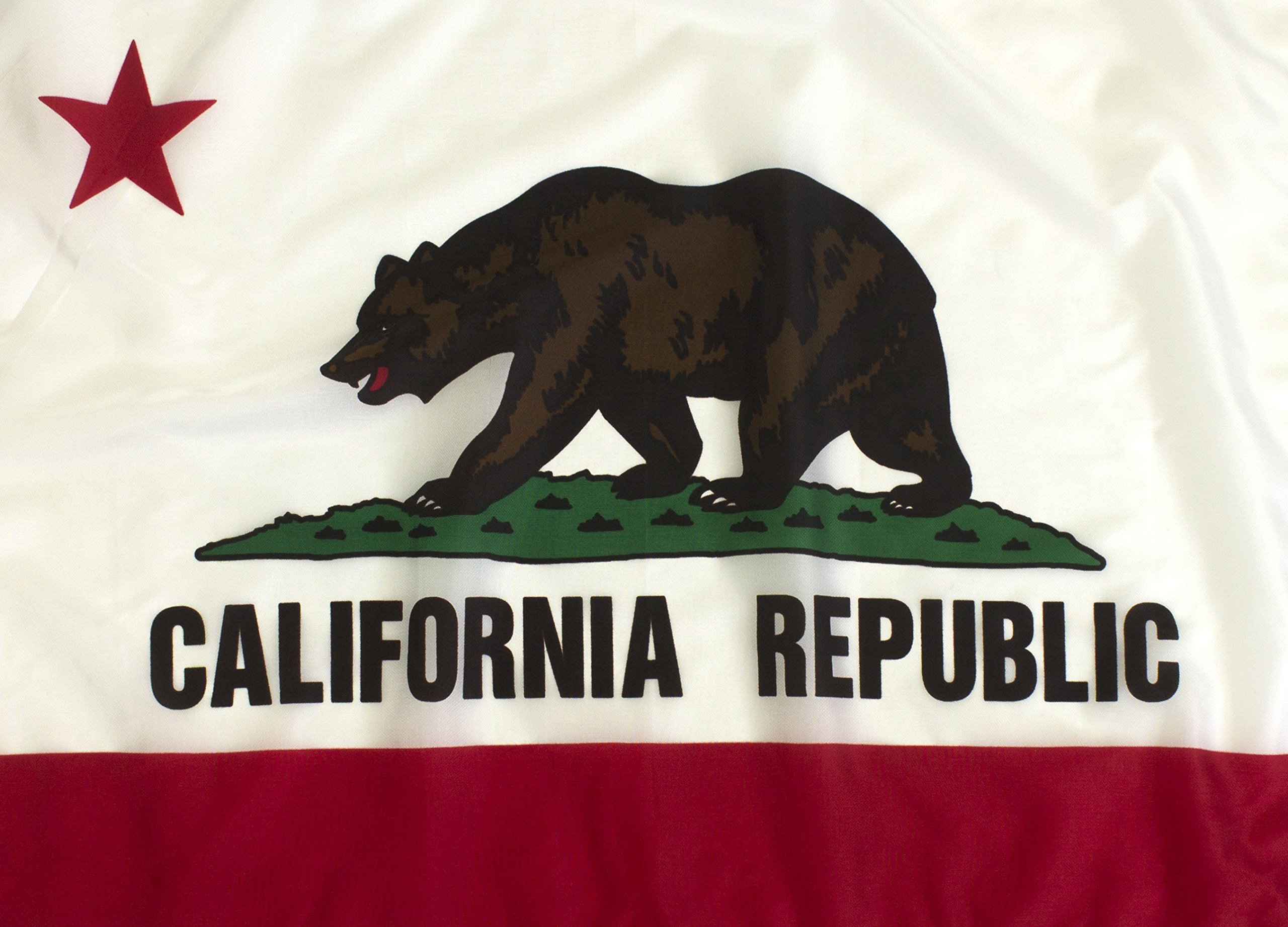 Premium Quality, State of California Flag (6'x10') by Federal Flags