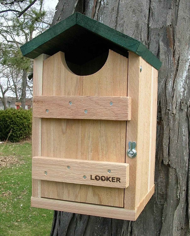amazoncom looker products screech owl kestrel and flicker house bird houses garden outdoor