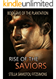 Rise of the Saviors (Book 5 of The Plantation)