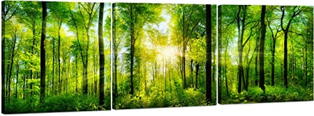 Forest Canvas Wall Art Decor 3 Panel Tree Filled Print Photograph Large Decorative Painting Wall Art For Living Room Kitchen Bedroom Office Modern Home Decor Gift For Men Women 24