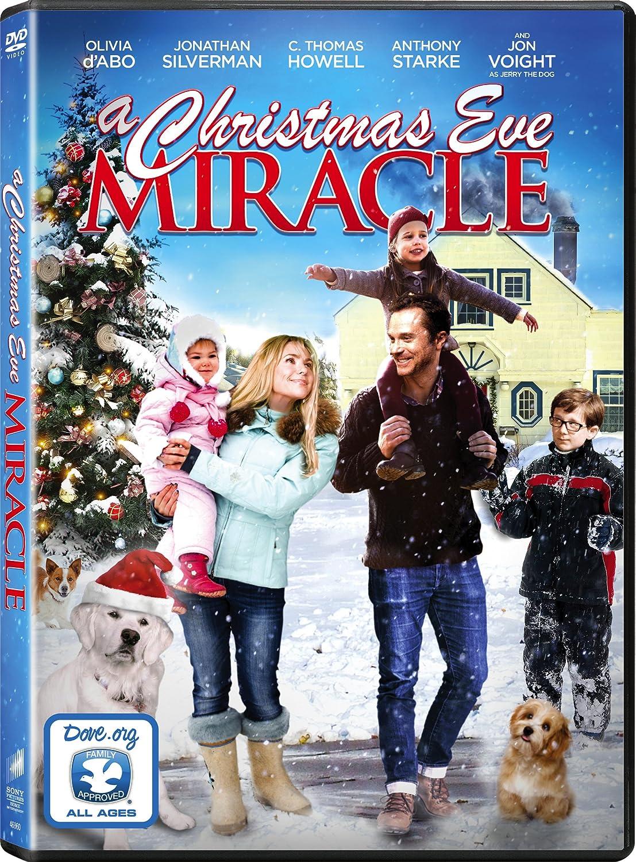 Amazon.com: A Christmas Eve Miracle: Olivia d'Abo, Anthony Starke ...