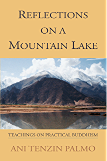 Amazon enduring lives living portraits of women and faith in reflections on a mountain lake teachings on practical buddhism fandeluxe Document
