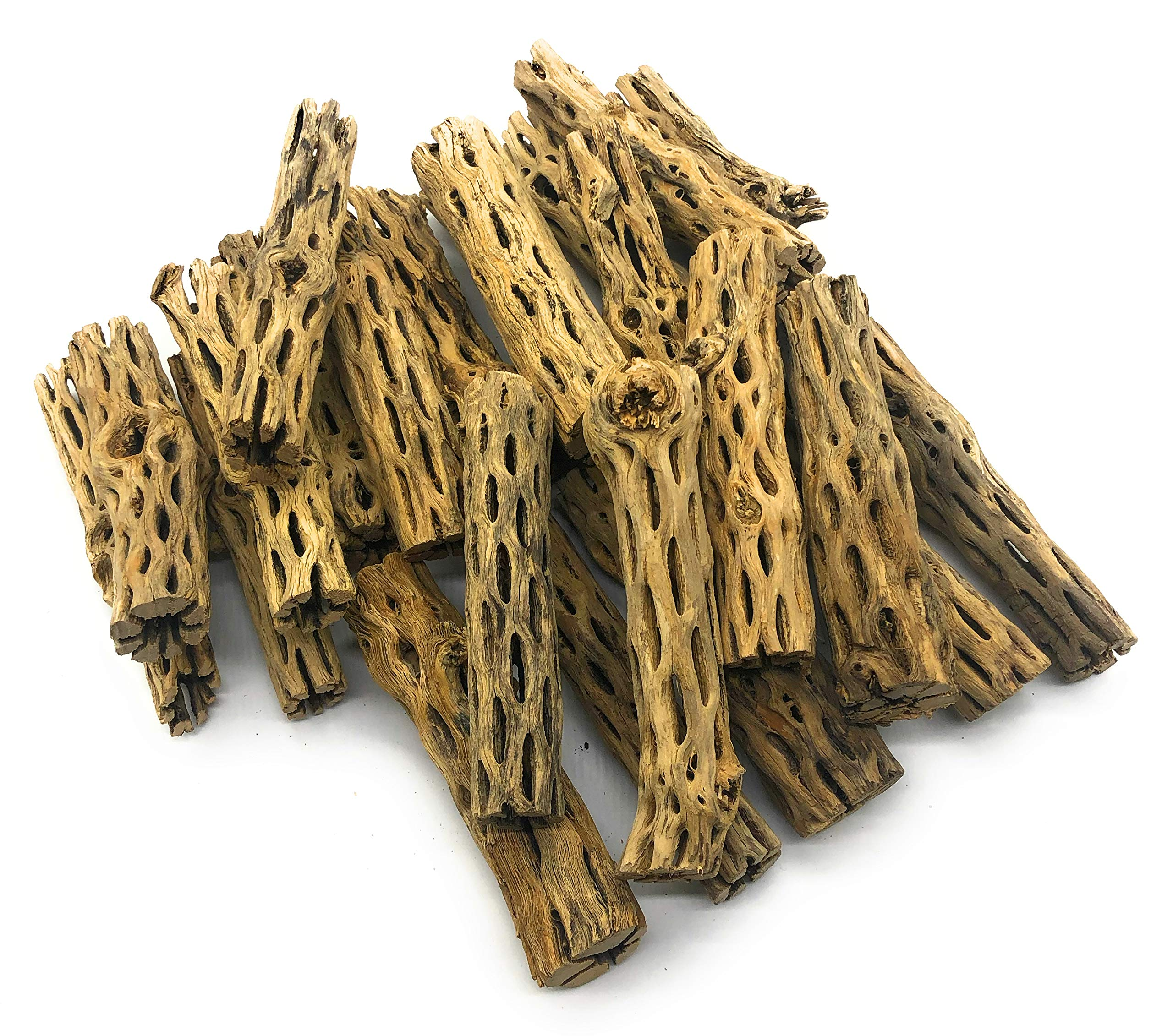 SubstrateSource ''Cholla Wood Aquarium Driftwood 6 Inches (25 Pieces) by SubstrateSource
