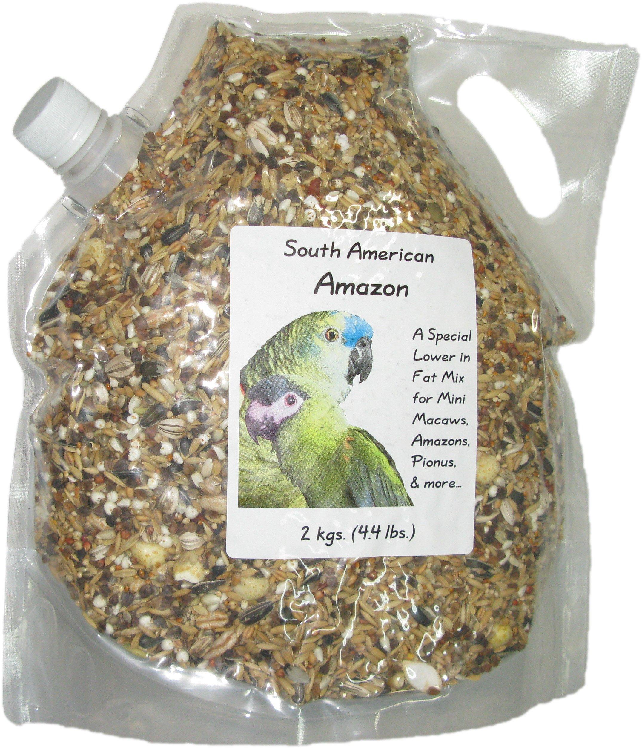Penn Seed Amazon Parrot, 2 kg (4.4 lbs) Pour Spout Bag by Penn Seed