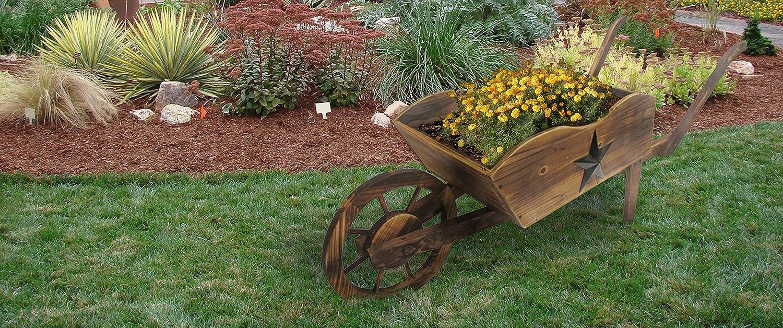 Amazon.com : Leigh Country Wheel Barrow Planter : Garden & Outdoor