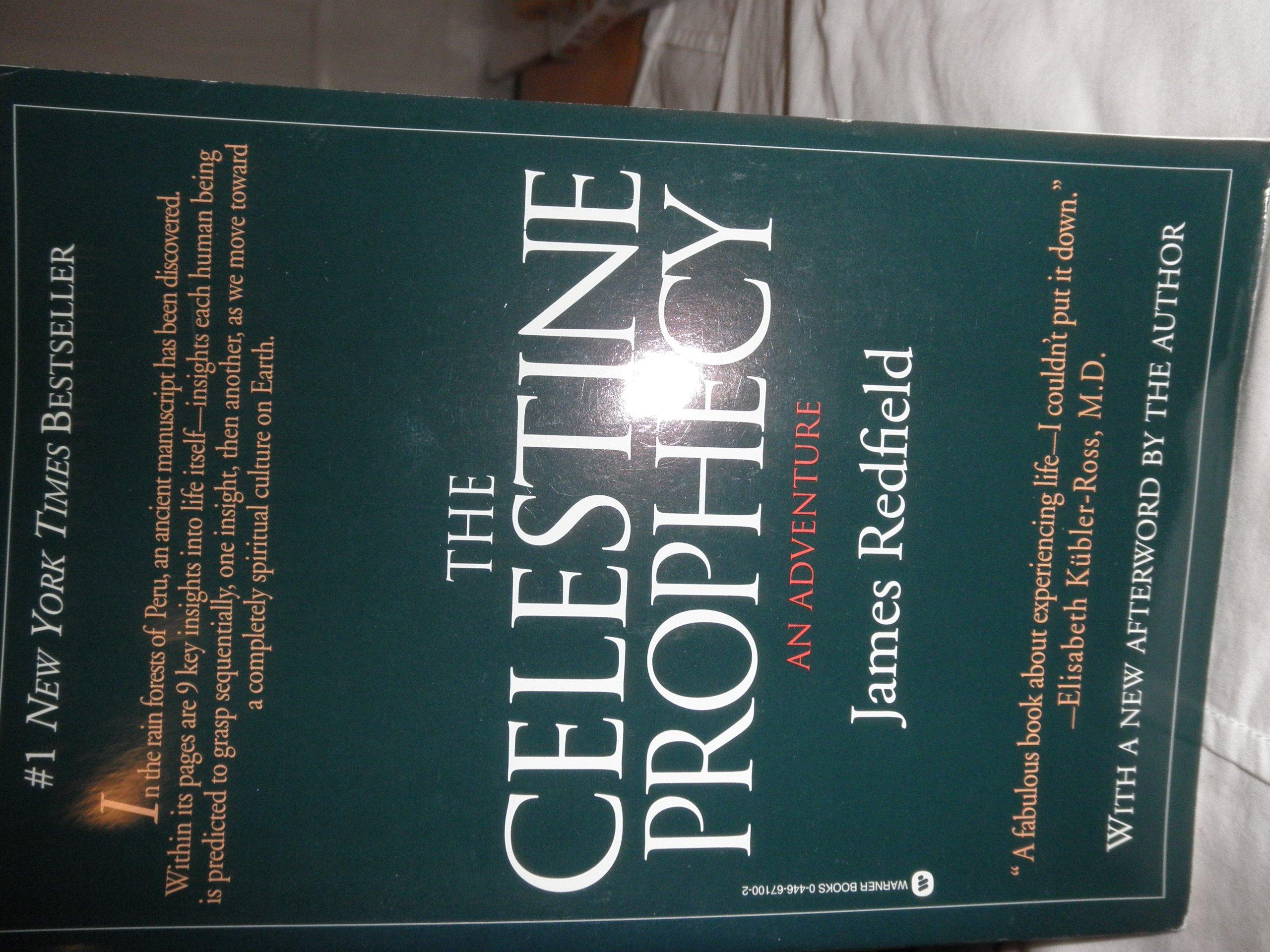 The Celestine Prophecy: An Adventure: James Redfield: 9780446671002:  Amazon: Books