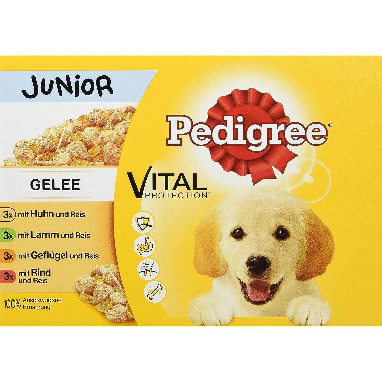 Pedigree Vital Protection Hundefutter