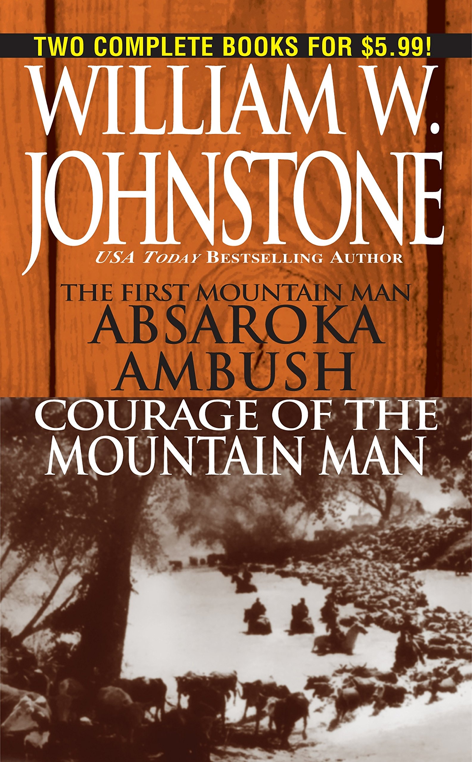 Read Online Absaroka Ambush/Courage of the Mountain Man pdf