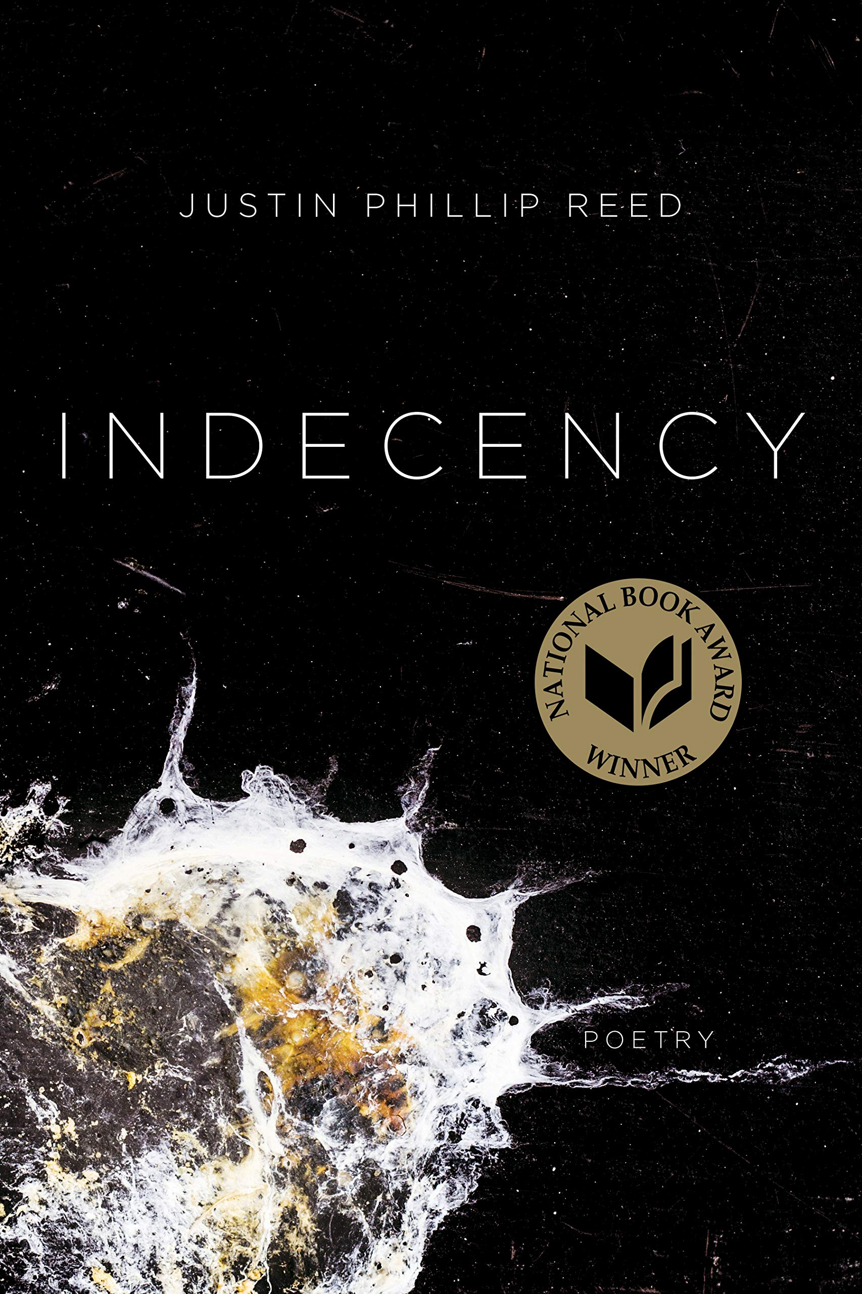 ' Indecency ' by Justin Phillip Reed