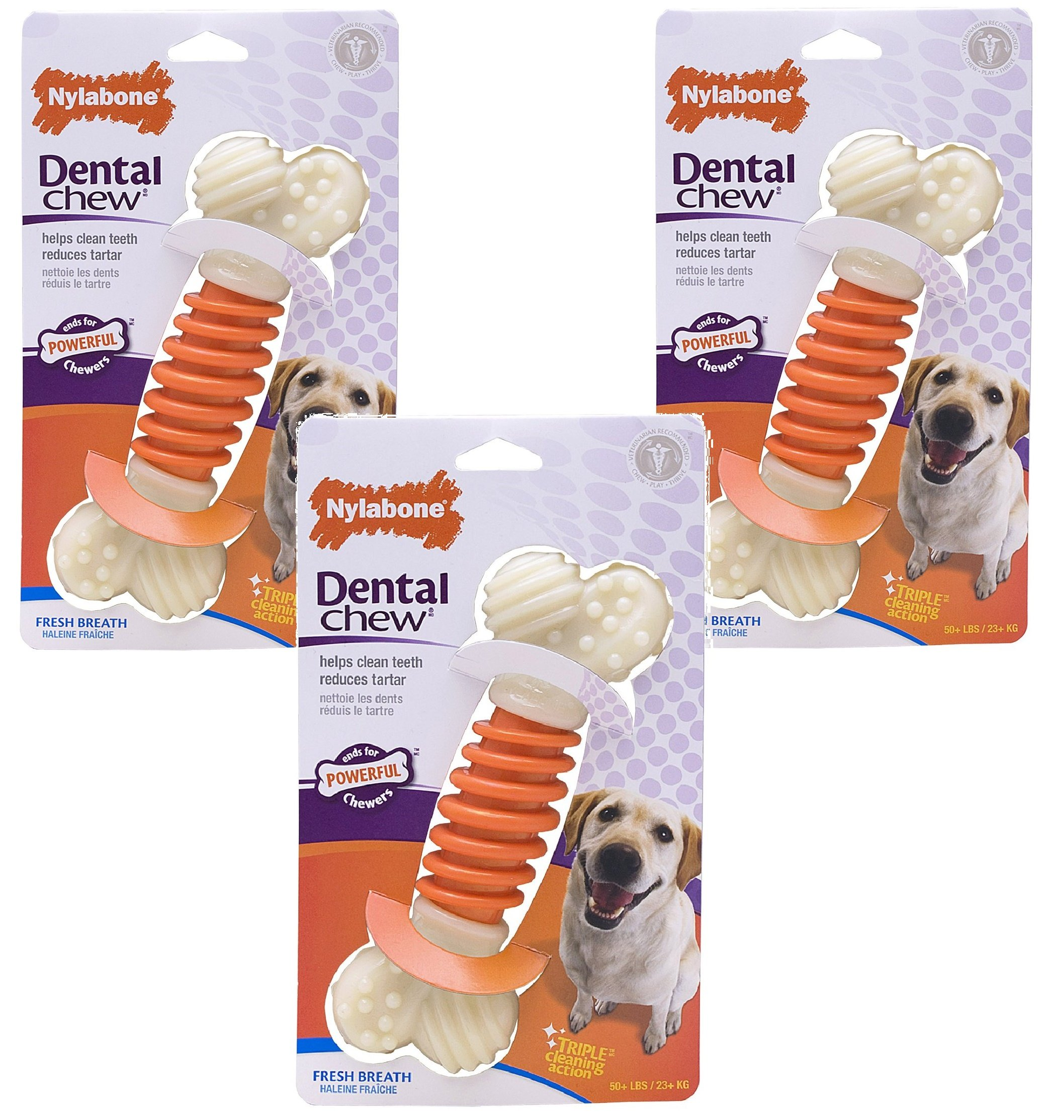 (3 Pack) Nylabone Pro Action Dental Chew, Bacon Flavored - Size Large
