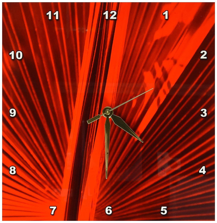 15 by 15-Inch 3D Rose 3dRose dpp/_16802/_3 Fan in Red Wall Clock