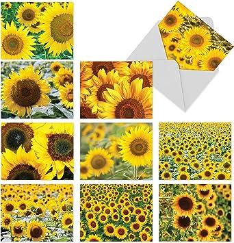 Pack of 4 Blank Flowery Notecards Blank Inside Greetings Card Packs