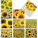 The Best Card Company - 10 Flower All Occasion Blank Cards (4 x 5.12 Inch) - Boxed Cards with Envelopes - Sunny Side Up M6042