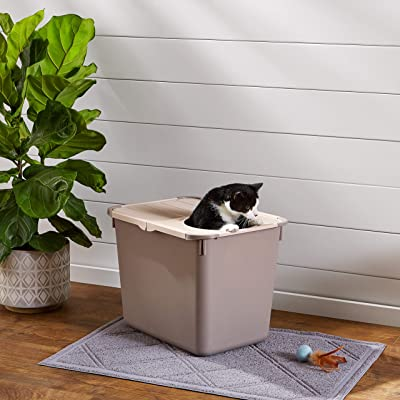 AmazonBasics Hooded Cat Box