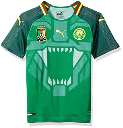 d04af6ff03b8 Image Unavailable. Image not available for. Color  PUMA 2018-2019 Cameroon  Home Football Soccer T-Shirt Jersey ...