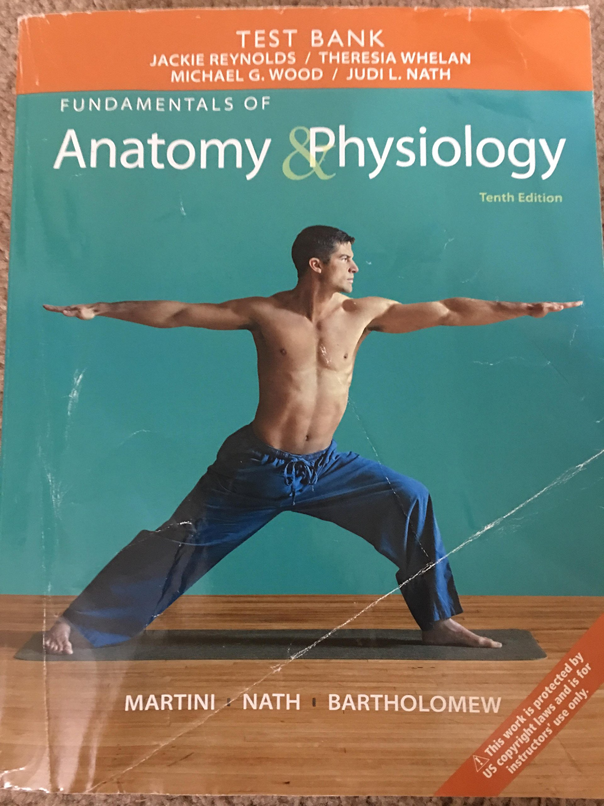 Test Bank- Fundamentals Anatomy & Physiology 10th Edition: Martini ...