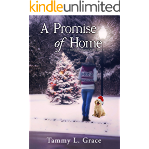 A Promise of Home (Hometown Harbor Series Book 3)